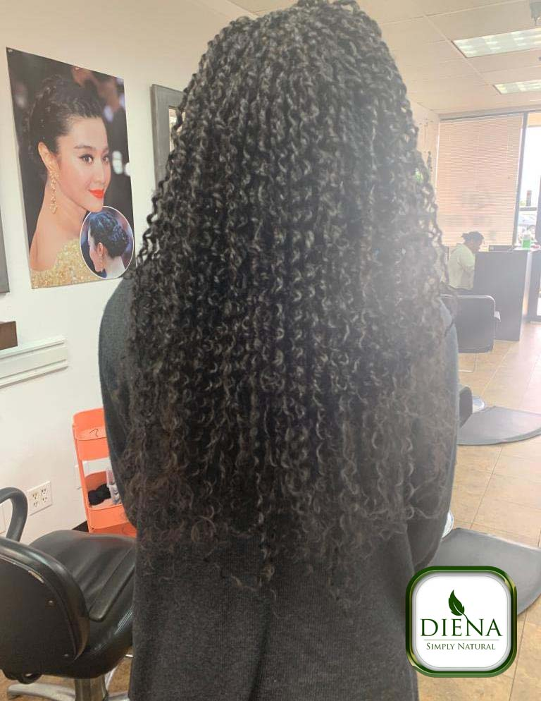 Passion Twist - DSN Braiding - Diena Simply Natural